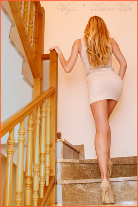 Vega Spanish escort of high standing in Zaragoza.